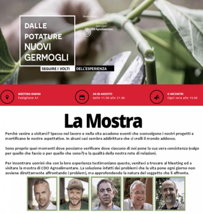 XXXV edizione del Meeting di Rimini: Verso le periferie del mondo e dell'esistenza. Il destino non ha lasciato solo l'uomo