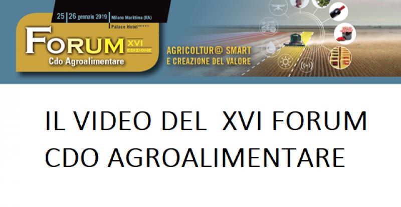 IL VIDEO DEL FORUM XVI EDIZIONE